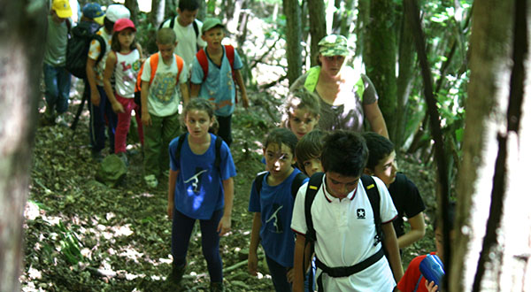 Stage estivo: il trekking